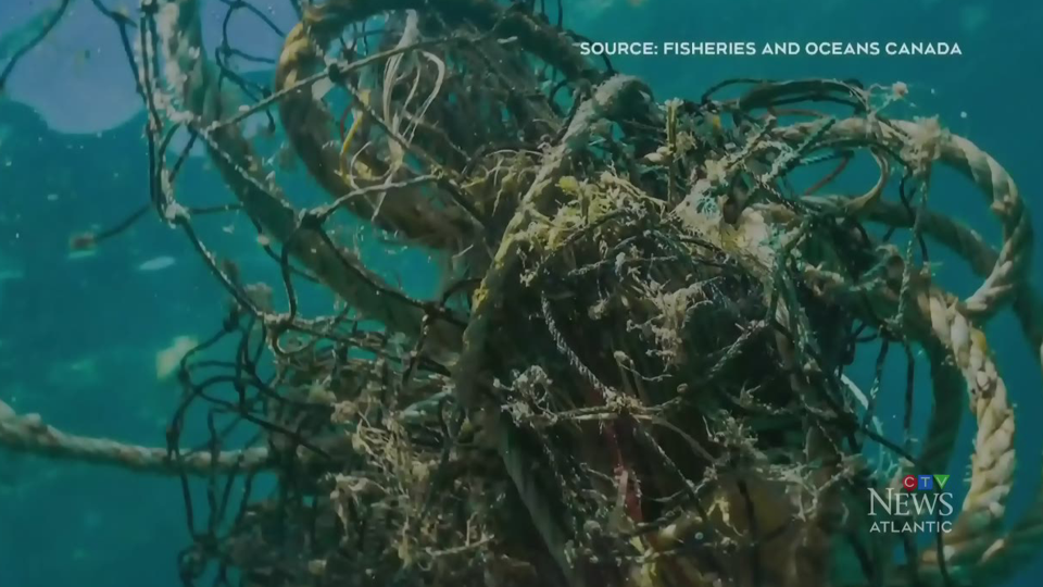 A deep dive to clean up ghost gear