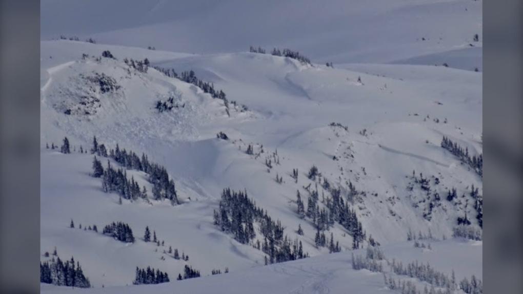 Whistler avalanche