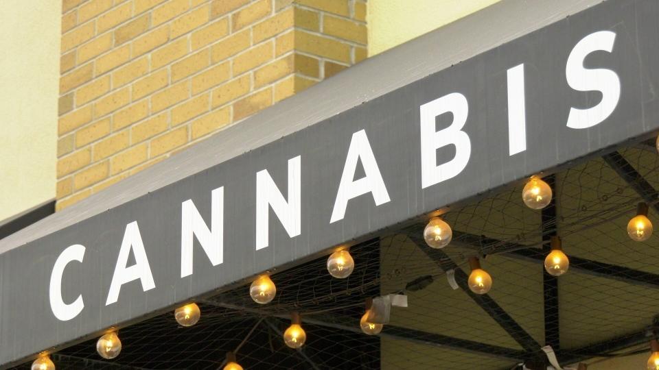 Bluebird Cannabis