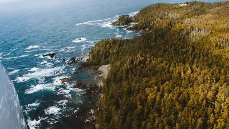 Cape Scott Park in Northern Vancouver Island is shown. More than 76 hectares of land was added to the park in 2020: (BC Parks/@sarahetoile Instagram)
