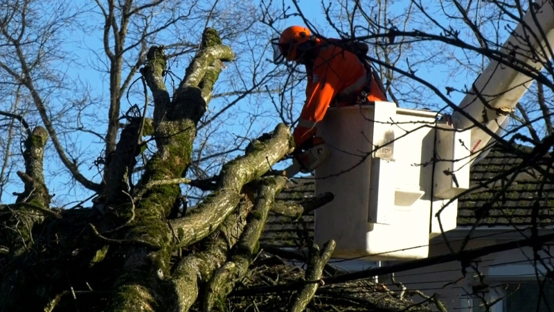 Thousands still without power after windstorm