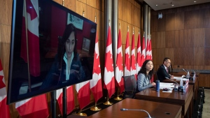 Public Services and Procurement Minister Anita Anand, Chief Public Health Officer Theresa Tam and Deputy Chief Public Health Officer Howard Njoo attend a technical briefing on the COVID pandemic in Canada, Friday, January 15, 2021 in Ottawa. THE CANADIAN PRESS/Adrian Wyld