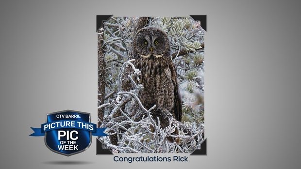 Pic of the Week: Winter Wildlife