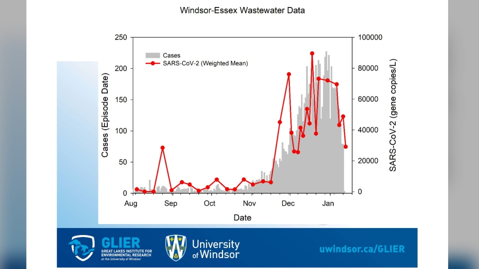 Wastewater data for Windsor-Essex on Jan. 15, 2021. (Courtesy WECHU)