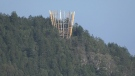 Malahat Skywalk rises above treeline