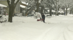 A man uses a snow blower to clear snow after a significant snowfall in Ottawa Saturday, Jan. 16, 2021. (Shaun Vardon / CTV News Ottawa)