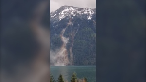 A still photo from a video recorded on Jan. 13, 2021 of a landslide on the east side of Harrison Lake, B.C. (Terry Kozma).