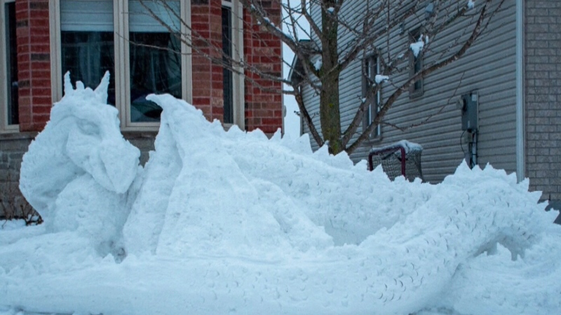 Ottawa doctor makes snow sculptures