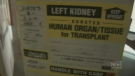 N.S. organ donation law takes effect