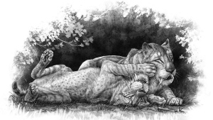 Sabre-toothed cubs playing together. (Illustration by Danielle Dufault,  Royal Ontario Museum)