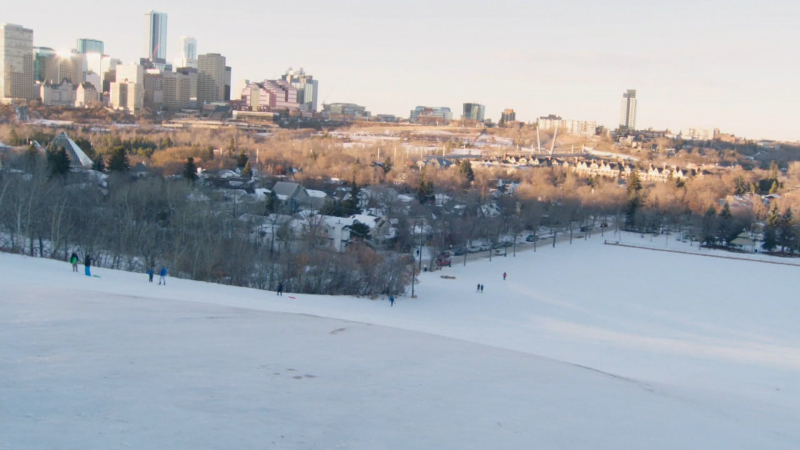 The hill at Gallagher Park is one of many favourite spots to go tobogganing this year.