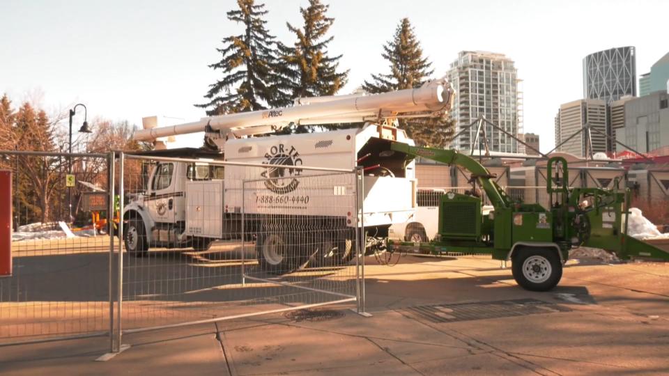tree removal, Eau Claire, Calgary