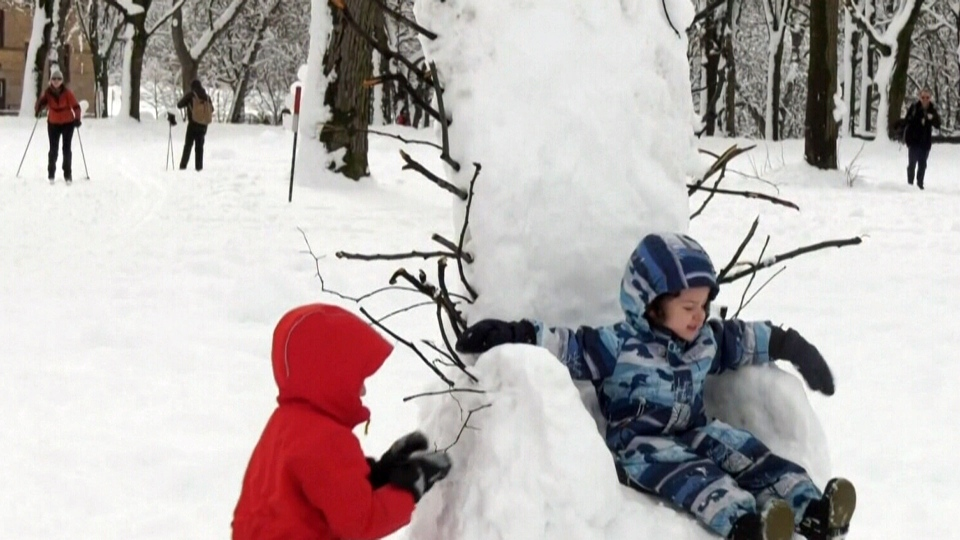 Montrealers get creative in the snow