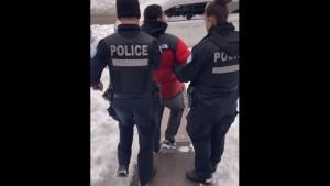 Montreal police arrest viral video