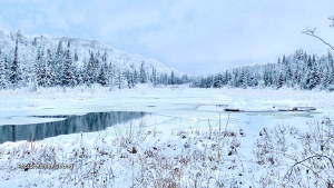 Fresh snow fall at litchfeild lake Quebec (Ashley Strong/CTV Viewer)