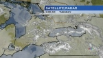 Snow squalls hit parts of Ontario