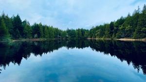 January 19, 2021: Lost Lake in Nanaimo (Photo: Carol Maier)