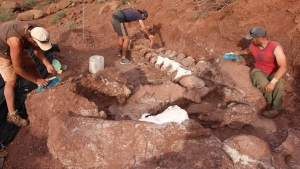 Paleontologists discovered the fossilized remains of a 98 million-year-old titanosaur in Neuquén Province in Argentina's northwest Patagonia. (Alejandro Otero and José Luis Carballido/CNN)