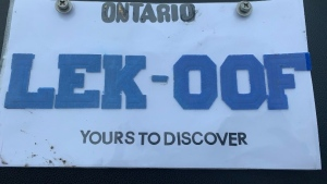 Guelph police said they seized a fake licence plate of a vehicle (Supplied: Guelph Police Service)