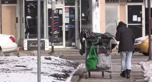 A woman walks with her cart on Princess Avenue in St. Thomas, Ont. on Tuesday, Jan. 19, 2021. (Brent Lale / CTV News)