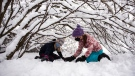 Elly Pergant Johnson, 10, left, and Elsie Sutherland, 10, right, play under the snow-laden branches of a bush during a snowstorm in Ottawa, on Saturday, Jan. 16, 2021. (Justin Tang/THE CANADIAN PRESS)