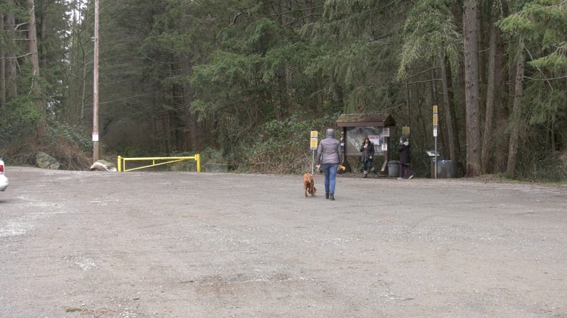 Mounties are searching for a man who allegedly exposed himself to walkers in the Northeast Woods of Comox on Monday. (CTV News)