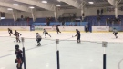 Nonprofessional hockey a no go in Manitoba