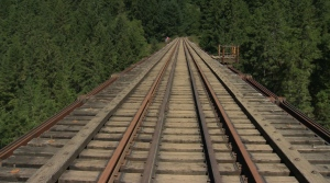The Goldstream trestle is seen in a recent photo. (CTV)