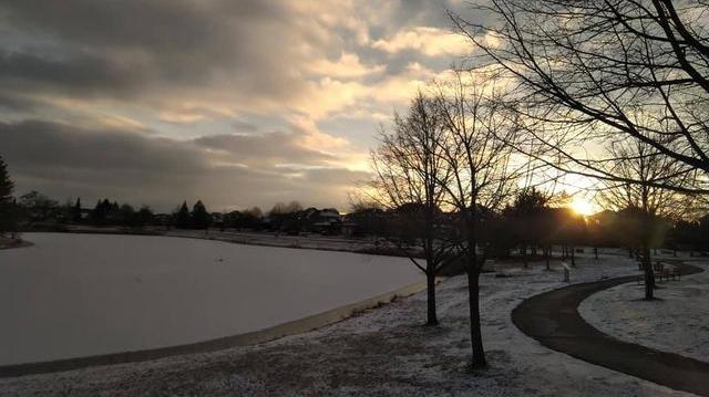 Snow Windsor