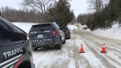 Police vehicles on the scene of a crash in Wellesley on Jan. 21, 2021. (Dan Lauckner / CTV Kitchener)