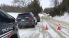 Police vehicles on the scene of a crash in Wellesley on Jan. 21, 2021. (Dan Lauckner / CTV Kitchener)
