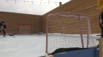 Backyard rinks popular amid pandemic
