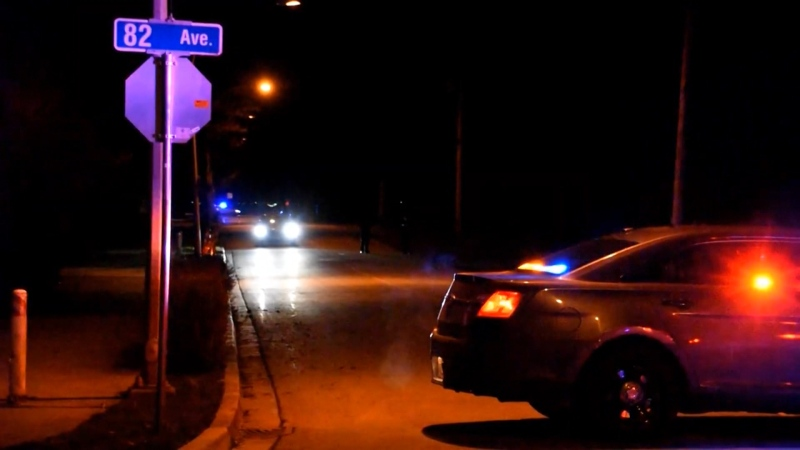 Mounties surrounded an area on 198A Street on Jan. 21, focusing their attention on a grey Audi.