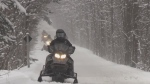 Snowmobilers take to the trails in Southern Georgian Bay on Fri., Jan. 22, 2021 (Roger Klein/CTV News)