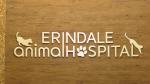 erindale animal hospital
