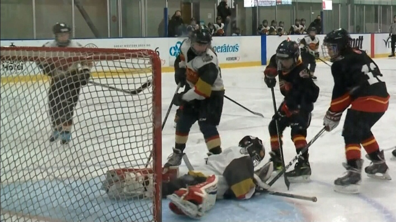 Petition calls on Moe to let kids play hockey