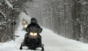 Following the closure of snowmobile trails in the North Bay Parry Sound District Health Unit area on Thursday, sledders are being asked not to fight back. (File)