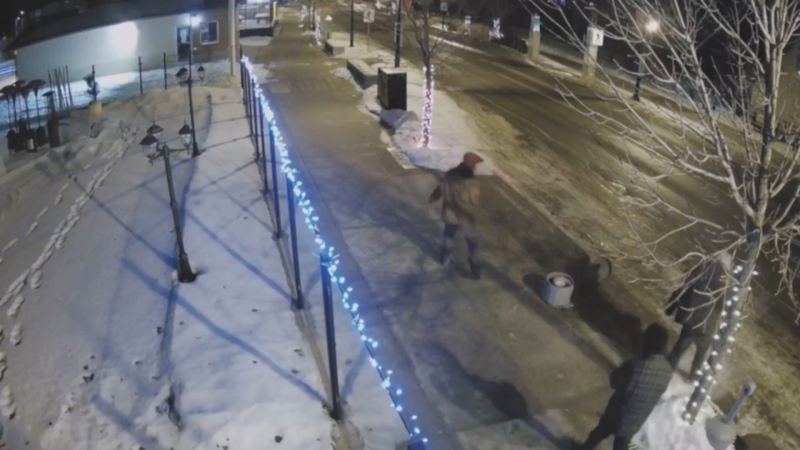 Sylvan Lake Winter Village vandals