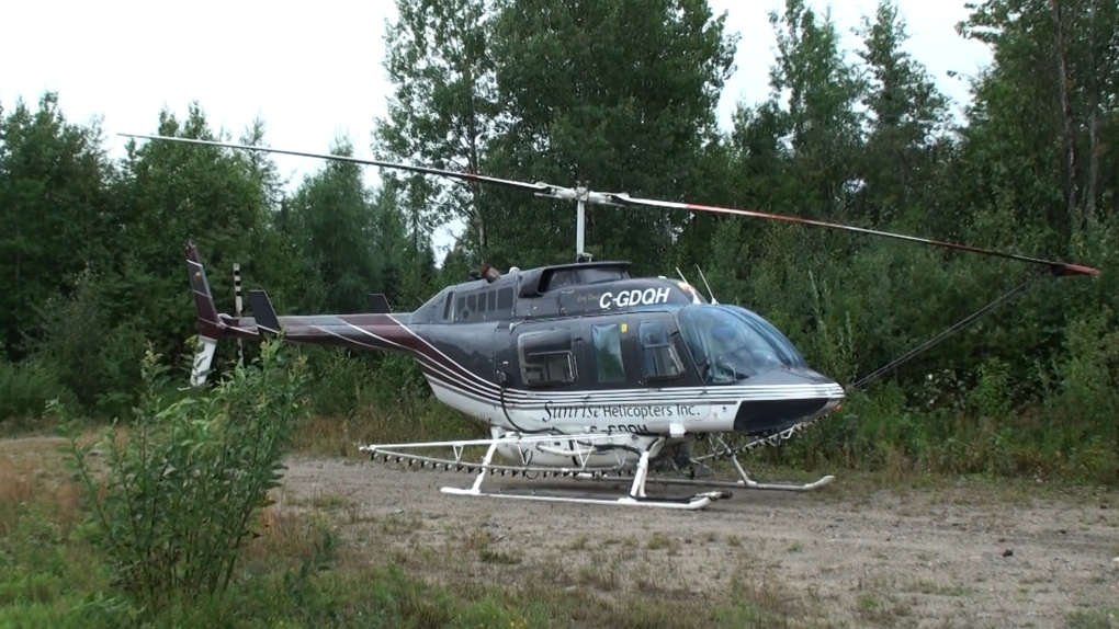 'It's a dead forest': northern bush pilot, First Nations decry herbicide spraying