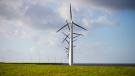 Wind turbines are seen on a dike near Urk, Netherlands, Friday, Jan. 22, 2021. (AP Photo/Peter Dejong)