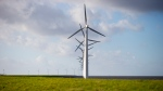 Wind turbines are seen on a dike near Urk, Netherlands, Friday, Jan. 22, 2021. (AP Photo/Peter Dejong)