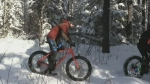 Maintaining the winter bike trails in Timmins