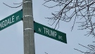Some residents of Trump Avenue in Ottawa have asked their city councillor to change the name of the street following the Donald Trump presidency in the United States. (Tyler Fleming / CTV News Ottawa)