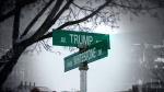 City ponders Trump Ave. name change