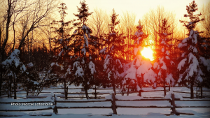 Gorgeous sunset, as seen from our front porch in St. Albert. (Marcel Lafontaine/CTV Viewer)