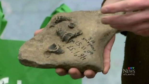 Mysterious package left at Cape Breton University dates back about 330 million years