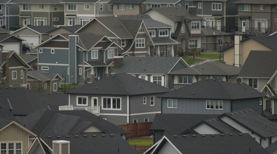 New homes in Colwood's Royal Bay neighbourhood on Jan. 26, 2021. (CTV News)