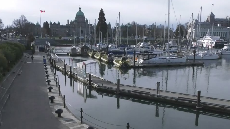 Victoria tourism trying to weather adversity