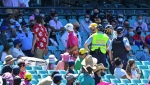 Fans being ejected from the Sydney Cricket Ground. (AFP)