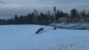 """A car lands on a snowy hill at College Heights Secondary School in Prince George, B.C. during what police have called a """"dangerous stunt."""" (Facebook)"""